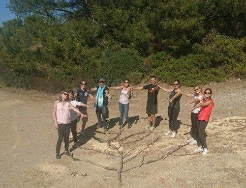 Land Art & Team-Building